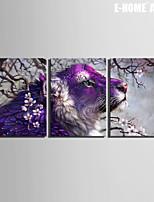 Dieren / Fantasie Canvas Afdrukken Drie panelen Klaar te hangen , Verticaal