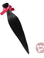 evet 1pc lot malaisiens faisceaux de cheveux vierges droite cheveu humain malaisienne droite non transformés couleur naturelle des cheveux