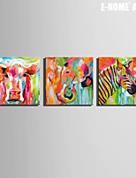 E-HOME® Stretched Canvas Art Colored Animals Decoration Painting  Set of 3