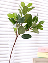 Green Plant Lifelike Simulation Banian