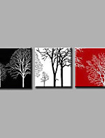 Ready to Hang Hand-Painted Oil Painting on Canvas Wall Art Contempory Abstract Flowers Black White Three Panels