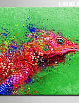Animali Print Canvas Un pannello Pronto da appendere , Quadrato