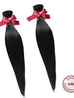 EVET Hair Unprocessed Brazilian Virgin Hair Extension Wholesale Straight Human Hair Weaves 2Pcs/Lot Natural Color