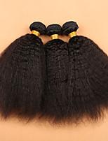Mongolian Virgin Hair Coarse Yaki 3 Pcs/Lot Mongolain Hair Weave Bundles  10