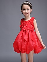 Girl's Pink / Red Dress , Lace / Dresswear Cotton / Polyester All Seasons