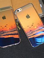 marino Playa de la salida del sol brillo suave cubierta trasera del caso gaviota semitransparente para el iphone 6s más / iPhone 6 Plus