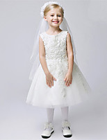 Vestido para Meninas das Flores - A-Line Longuette Sem Mangas Renda / Tule