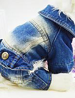 Chien Manteaux / Combinaison-pantalon / Vestes en Jean Bleu / Bleu foncé Printemps/Automne Jeans Mode