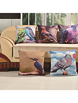 Baolisi Set of 5 3D Poultry birds of the world Decorative Pillow /Children of the World