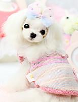 Dog Coat Blue / Pink Winter Fashion