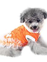 Cani Cappottini-Inverno-Di tendenzaBianco / Arancione- diVelluto a coste