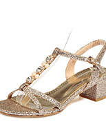 Women's Shoes Glitter / Customized Materials Chunky Heel Open Toe Sandals Party & Evening / Casual Silver / Gold