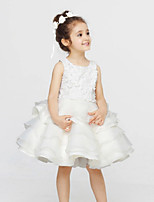 Girl's White Dress , Ruffle Acrylic All Seasons