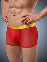 Men's Mesh / Polyester Boxer Briefs Underwear