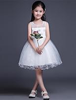 Vestido de Niña Florista-Corte en A Corta/Mini-Tul Sin Mangas