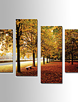 U2art®Landscape Canvas Print Autumn Leaves Scenery Four Panels Ready to Hang , Vertical For Living Room(No Frame)