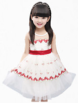Girl's Purple / Red Dress,Lace Cotton Summer