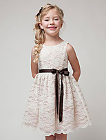 Girl's Summer And Spring Cotton Sleeveless Lace Pure Color Girdle Dress