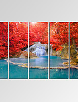 VISUAL STAR®Dreamlike Waterfall Canvas Print Maple Tree Forest Landscape Canvas Art Ready to Hang