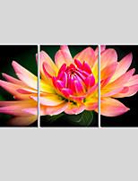 Paisagem / Botânico / Moderno Impressão em tela 3 Painéis Pronto para pendurar,Quadrada