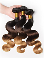 Peruvian Virgin Hair Body Wave Three 3 Tone Ombre Hair Extensions Unprocessed 3 Bundles Peruvian Body Wave Virgin Hair