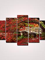 Moderno Print Canvas Cinque Pannelli Pronto da appendere,Orizzontale