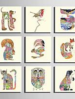 Animali Print Canvas Un pannello Pronto da appendere,Quadrato