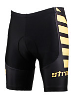 PALADINSPORT New Men's Cycling Shorts Bike TROUSERS with 3D Pad Lycra DK619 winds