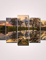 Modern Canvas Print Five Panels Ready to Hang,Horizontal