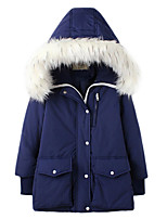Women's Solid Blue / Gray Padded Coat,Simple / Active Hooded Long Sleeve