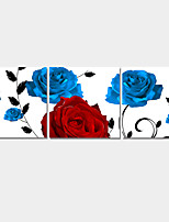 Homen Decor Canvas Set Of 3 Modern Abstract Wall Painting Rose Flower Print Art Pictures