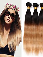 3PCS 12-24 inch Brazilian Straight Hair Ombre #1B27 Color Human Virgin Hair