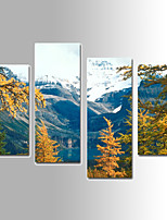 U2art®Landscape Canvas Print Four Panels Ready to Hang , Vertical For Living Room(No Frame)