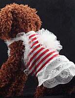 Classic Stripes Lace Pet Dress
