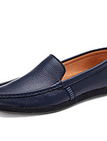 Men's Shoes Outdoor / Casual Nappa Leather Loafers Black / Blue / Brown
