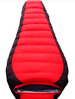 1000g Down Polyester Lining Single Mummy Bag for Camping and Hiking