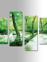 Paisaje Impresión de la lona Cuatro Paneles Listo para colgar,Vertical