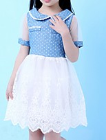 Girl's Blue Dress,Lace Cotton Summer