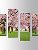 U2art®Landscape Canvas Print Cherry Blossoms Scenery Four Panels Ready to Hang , Vertical For Living Room(No Frame)