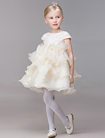 A-line Short/Mini Flower Girl Dress-Organza Short Sleeve