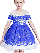 Girl's Blue / Red Dress Cotton / Polyester Summer