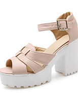 Women's Shoes Chunky Heel Heels / Peep Toe / Platform / Gladiator / Open Toe Sandals / Dress / Casual