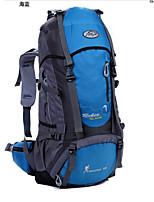 Backpack Camping & Hiking Waterproof / Rain-Proof / Dust Proof / Multifunctional 50 L Terylene / 600D
