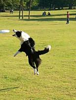 Durable Dog Training Frisbee Toys