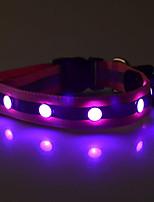 Röd / Vit / Grön / Blå / Gul / Purpur / Orange-Reflekterande / LED Lampor-Nylon-Halsband- tillHundar