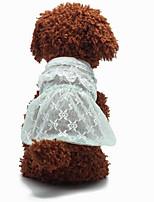 Charming Lace Ruffles Pet Dress