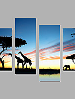 Animal Giraffe Canvas Print Four Panels Ready to Hang,Vertical For Living Room With Cotton Drawing(No Frame)
