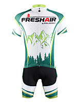 PaladinSport Men's  Cycyling Jersey + Shorts  Bike Suits DT30  green hill
