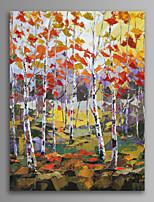 Paesaggio / Botanical / Viaggi Print Canvas Un pannello Pronto da appendere,Verticale