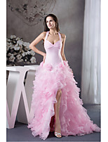 Formal Evening Dress Ball Gown Halter Court Train Organza